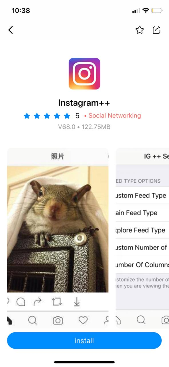 Install Instagram++ on iOS