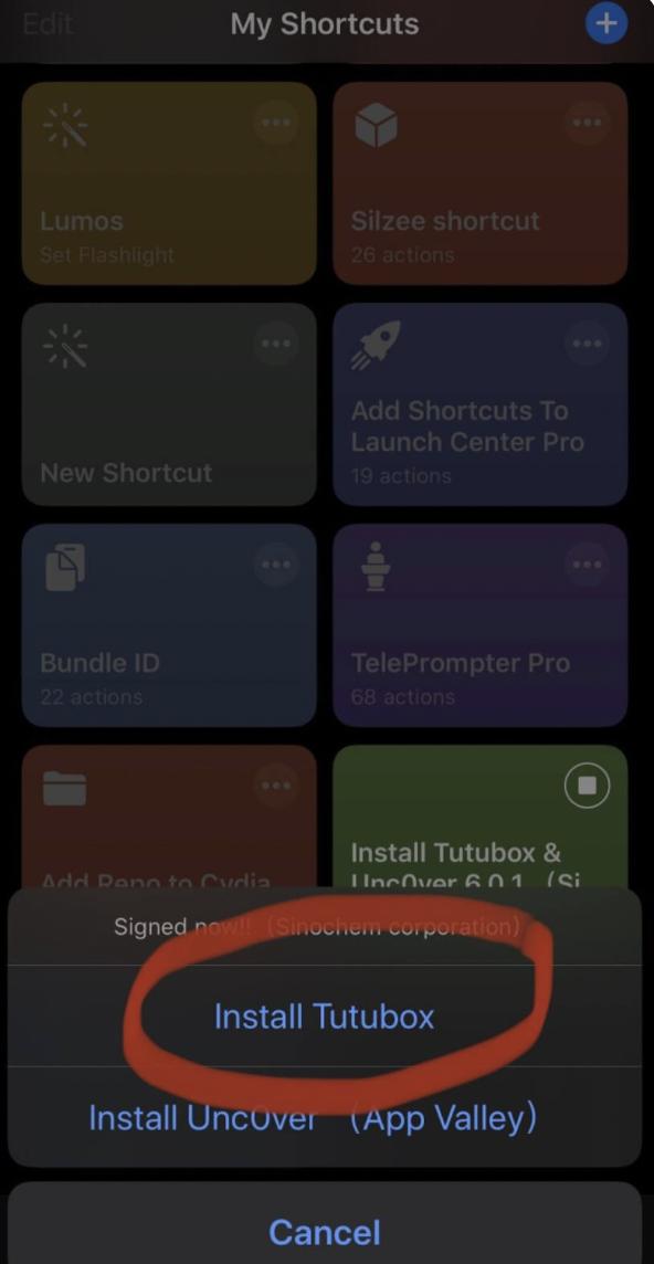 Install TuTuBox App on iOS